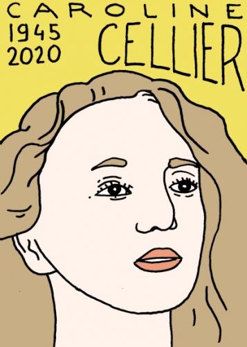 Mort de Caroline Cellier, dessin, portrait,laurent jacquy