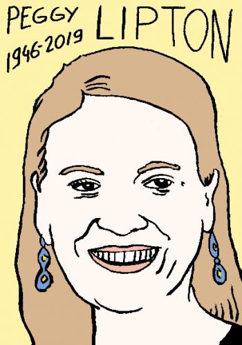 mort de Peggy Lipton, dessin, portrait, laurent jacquy,répertoire des macchabées célèbres,mort d'homme,